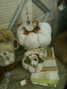 WBV Pumpkins